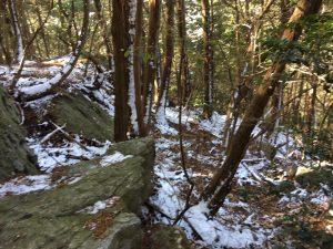三上山雪景色